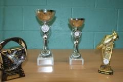 Presentation Trophies